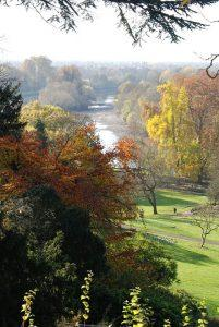 Autumn in Richmond Hill - and you can easily enjoy it with some help from our Richmond Hill movers