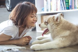 A woman smiling at a dog. If you want to prepare your pet for a move, you have to be considerate to their feelings.